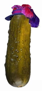 Pickle Anne